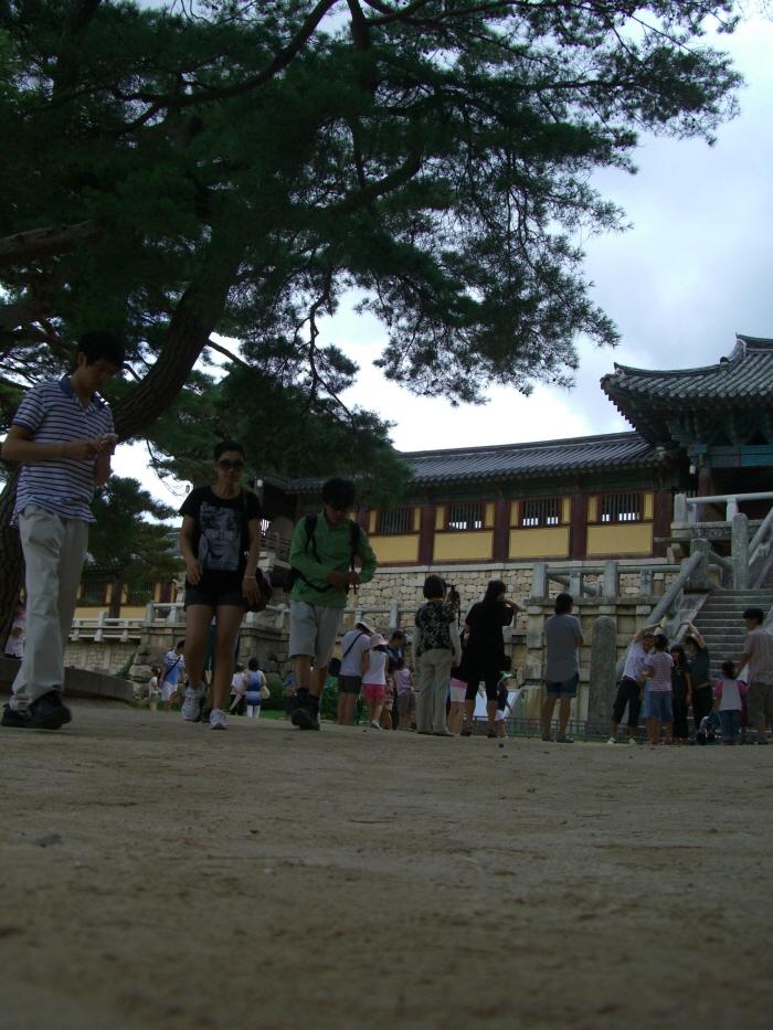 크기변환_20090805 경주03-1 불국사.JPG